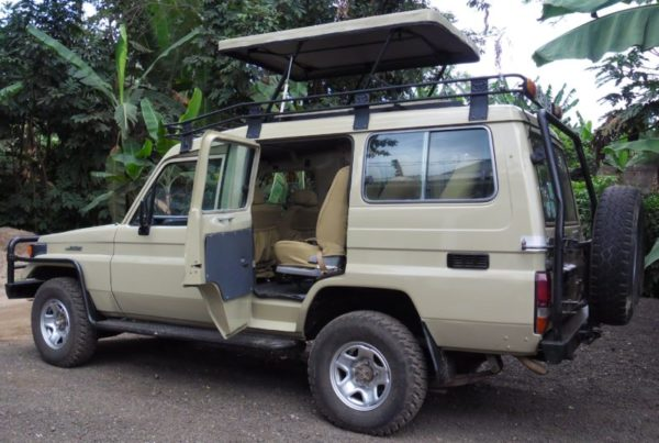 Kenya Tours and Safaris